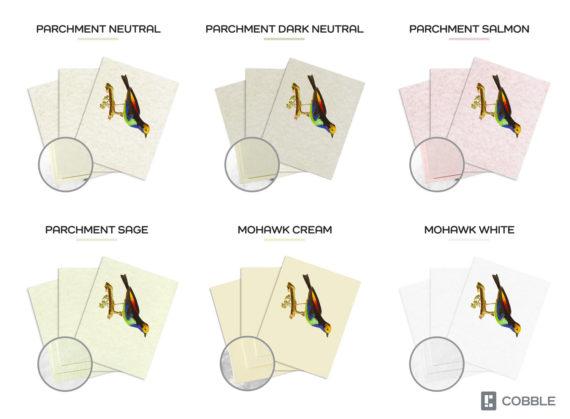colourful-bird-hanging-on-tree-print-nature-illustration-bird-art-print-ornithology-5ab5f4403.jpg