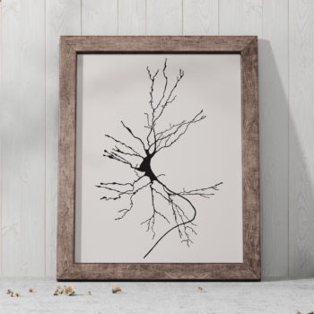 Neuron Sketch Print - Dieter's Cell - Vintage Science Art Print - Science Poster - Science student gift idea - Neurology Gift - Canvas Art