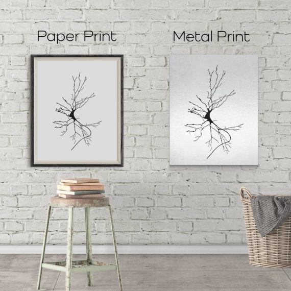 neuron-sketch-print-dieters-cell-vintage-science-art-print-science-poster-science-student-gift-idea-neurology-gift-canvas-art-5ab5ea252.jpg