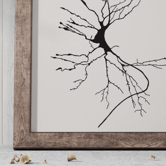 neuron-sketch-print-dieters-cell-vintage-science-art-print-science-poster-science-student-gift-idea-neurology-gift-canvas-art-5ab5ea376.jpg
