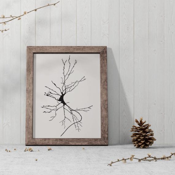 neuron-sketch-print-dieters-cell-vintage-science-art-print-science-poster-science-student-gift-idea-neurology-gift-canvas-art-5ab5ea3a7.jpg