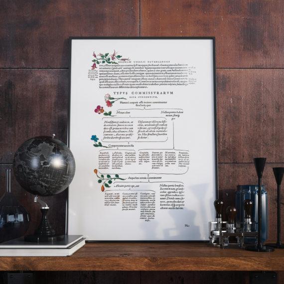de-humani-cororis-fabrica-print-the-human-body-andreas-vesalius-1543-manuscript-art-vintage-medical-art-print-science-gift-5b134d3f1.jpg