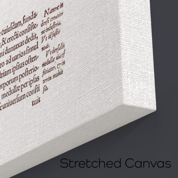 de-humani-cororis-fabrica-print-the-human-spine-andreas-vesalius-1543-manuscript-art-vintage-medical-art-print-science-gift-5b134d284.jpg